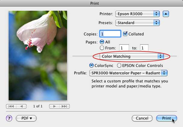 How To Use Printer Profiles For Color Fidelity