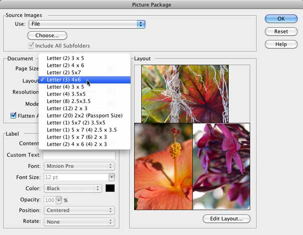 How to print multiple images on a single page macworld elements picture package dialog includes many useful layout options though you can always create your own by clicking the edit layout button reheart Images