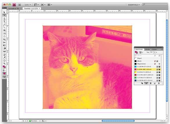InDesign tip: tinting grayscale photos | Macworld