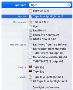 Tiger Spotlight magnifying glass