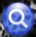 leopard spotlight icon