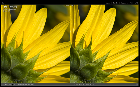 Lightroom's Clarity in action (2)
