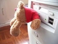 Teddy Bear Flash