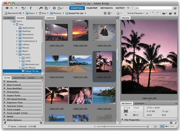 adobe bridge cs5 free download mac